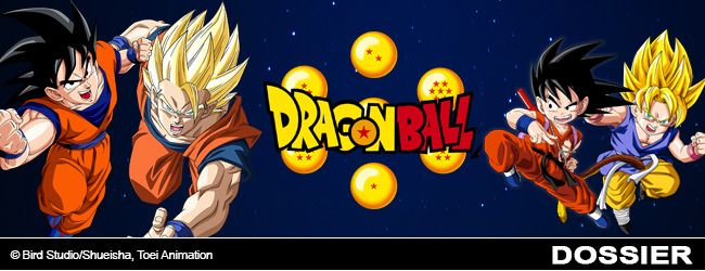 slide-dossier-dragon-ball-partie-2.jpg