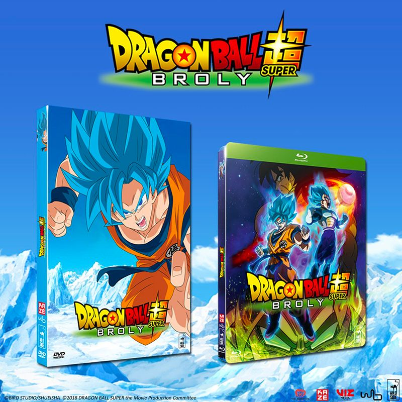 annonce-dvd-db-super-broly-wild-side.jpg