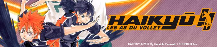 Dossier - Haikyû !!