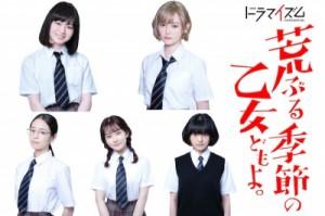 drama manga - Araburu Kisetsu no Otome-domo yo