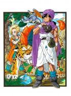 import animé - Dragon Quest V - Your Story