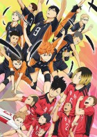 manga animé - Haikyu!! - Films