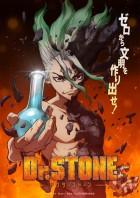 import animé - Dr Stone