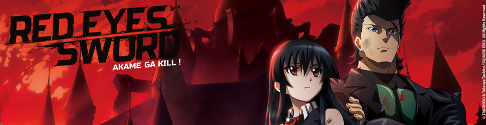 Red eyes sword - Akame ga Kill! - Anime