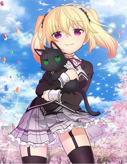 Nora - Princess and Stray cat