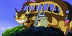 Dvd - Mon Voisin Totoro - Collector