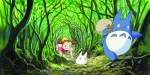 Dvd - Mon Voisin Totoro