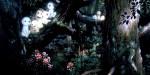 Dvd - Princesse Mononoke - Collector