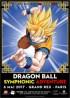 manga - Dragon Ball - Symphonic Adventure