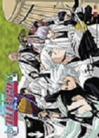 Bleach - Poster Capitaine Division 13