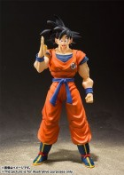 Son Goku - S.H. Figuarts Ver. Saiyan Grown on Earth