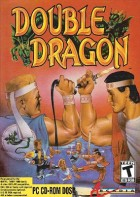Jeu Video - Double Dragon