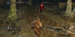 jeux video - Dark Souls II