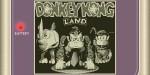 jeux video - Donkey Kong Land
