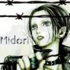 Logo midoriyxy