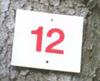 Logo shamo0012