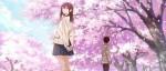 Le film d'animation Kimi no Suizo wo Tabetai se précise