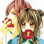 manga like kyou koi wo hajimemasu yahoo dating