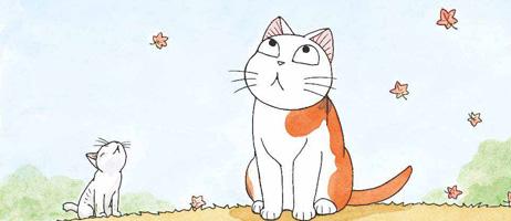 Choubi-Choubi est mon chat pour la vie chez Soleil