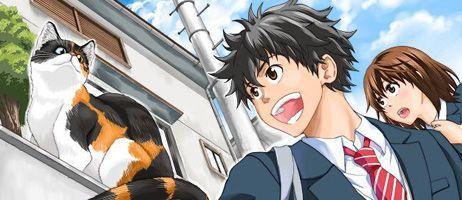 Le manga Félin pour l'autre à paraitre chez Doki-Doki