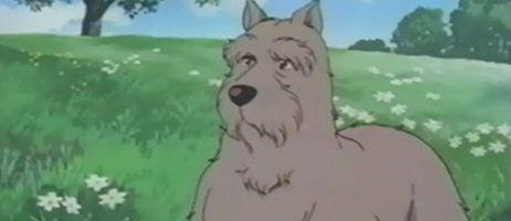 Un chien des Flandres, bientôt en DVD chez Black Box