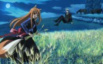 Spice wolf anime visual 5