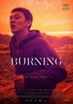 Burning visual 01