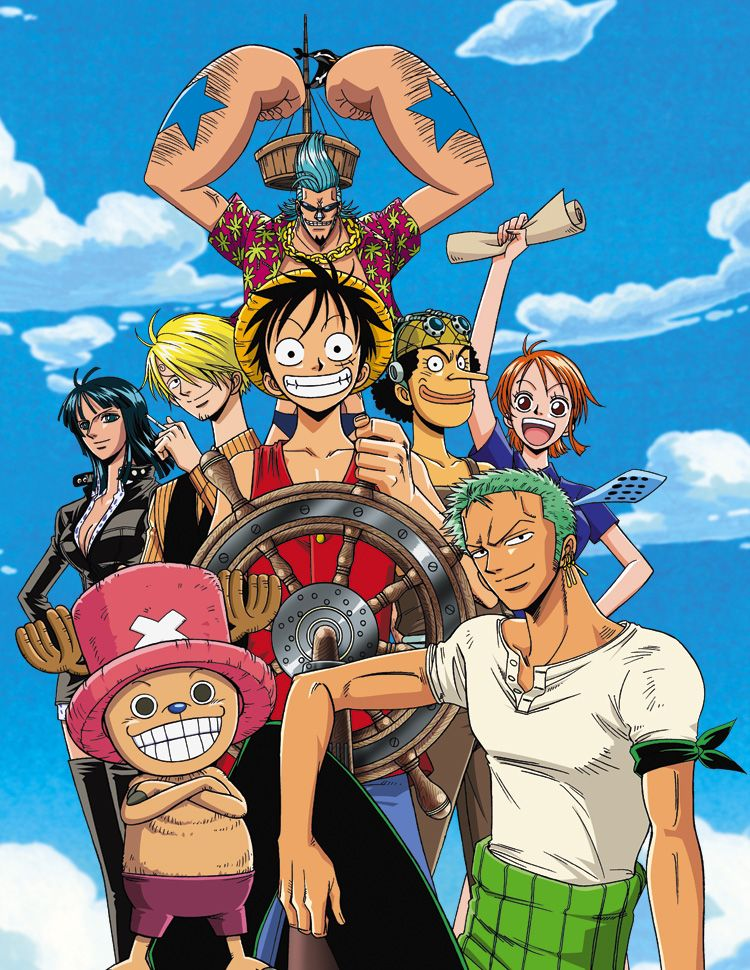 One piece anime visual 2