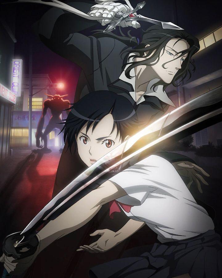 Blood plus anime visual 12