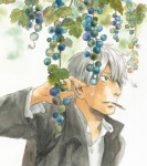 Mushishi manga visual 2