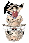 One piece visual 1