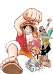 One piece visual 6