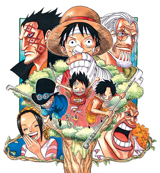 One piece visual 8
