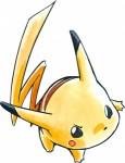Pokemon grande aventure visual 8