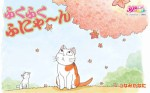 Choubi mon chat pour la vie visuel 2