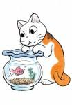 Choubi mon chat pour la vie visuel