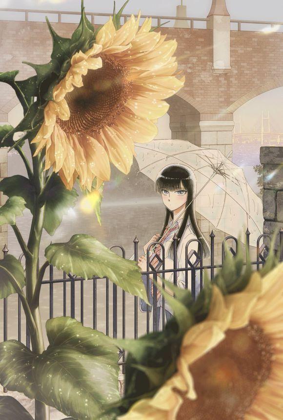 Apres la pluie visual manga 1
