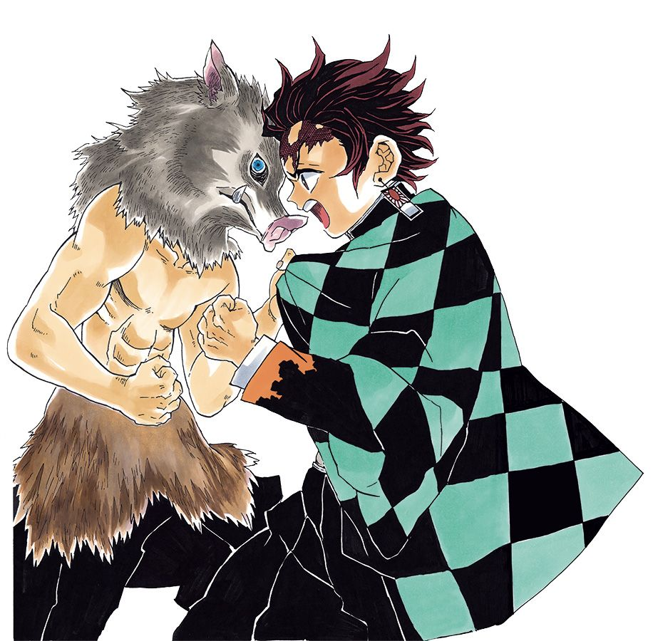 Demon slayer manga visual 4