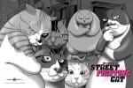 Fond ecran street fighting cat 4