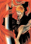 Bleach visual 2