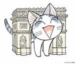 Chi vie de chat visual 6