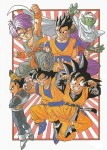 Dragon ball illust 9