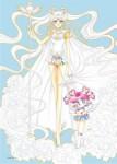Sailor moon visual 1
