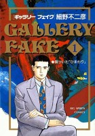 Gallery Fake vo