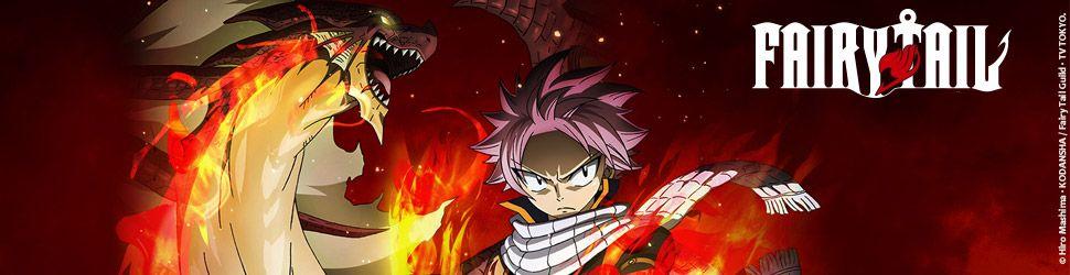 Fairy Tail - Collection - Manga