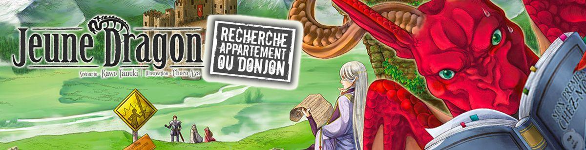 Jeune dragon recherche appartement ou donjon - Manga