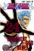 Manga - Manhwa - Bleach jp Vol.24
