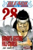 Manga - Manhwa - Bleach jp Vol.28