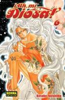 Manga - Manhwa - Ah, Mi Diosa! es Vol.6