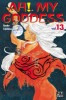 Manga - Manhwa - Ah! my goddess Vol.13